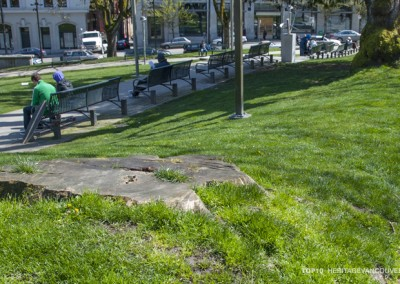 10. Historic Street Trees