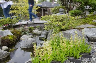 Garden Tour 4
