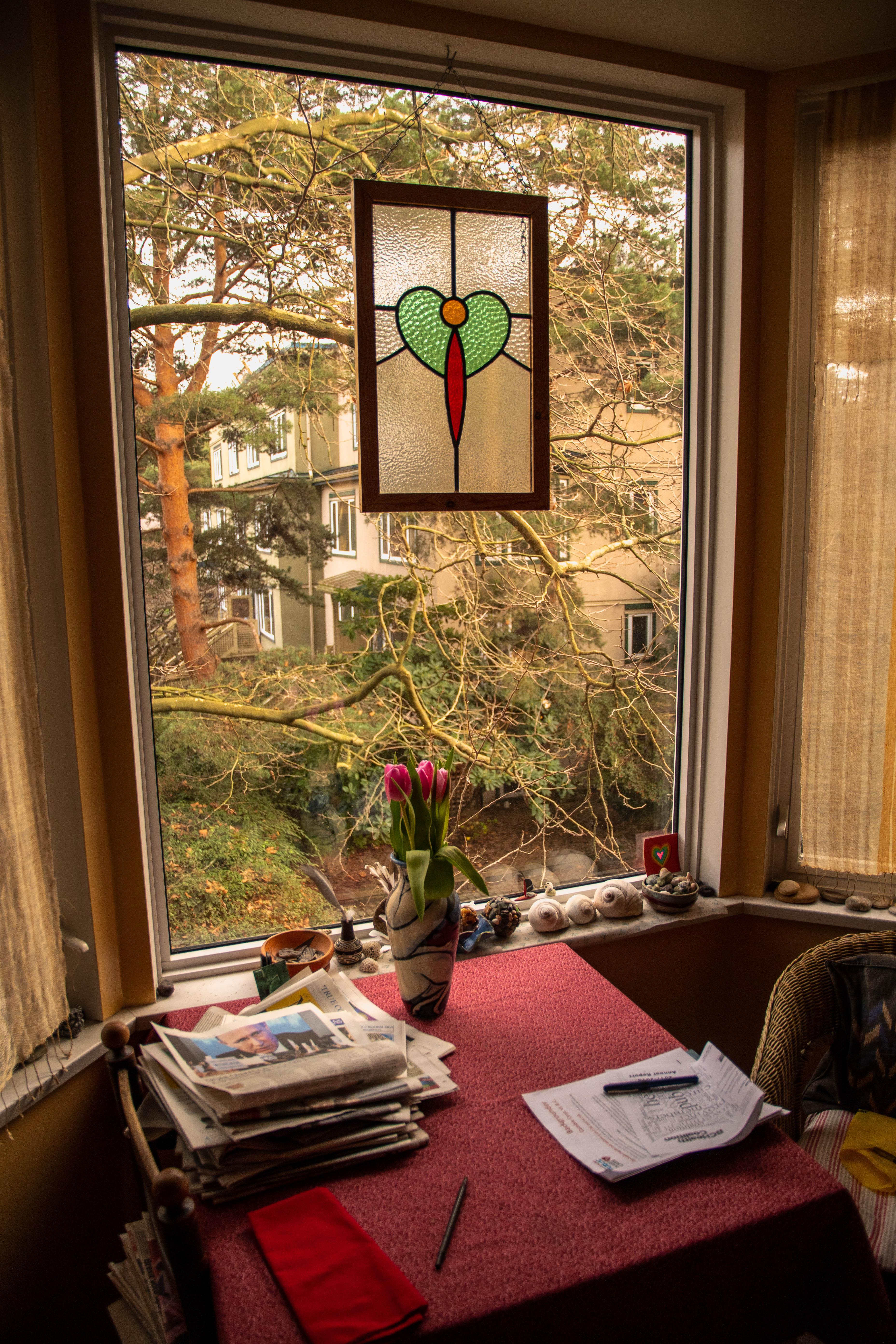 A kitchen window in the co-op